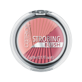 Румяна Catrice Strobing Blush 020 (Цвет 020 Mrs. Rosalie Berry variant_hex_name E59195)